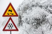 stock photo of sleet  - Dangerous and icy road with sleet covered trees - JPG