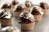 pic of chocolate muffin  - delicious sweet chocolate muffins on a tray - JPG