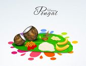 picture of pongal  - South Indian harvesting festival - JPG