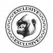 foto of ape  - Ape head logo in black and white - JPG