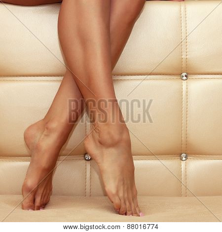 Beautiful Shapely Female Legs