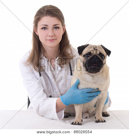 Happy Young Woman Vet Doctor With Pug Dog Isolated On White