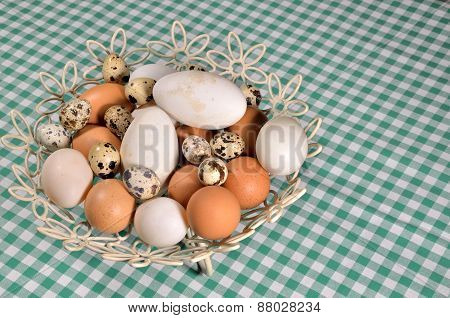 Different Eggs