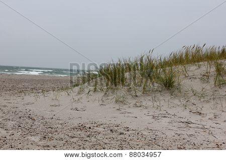 Beach At Skagen In Denmark...