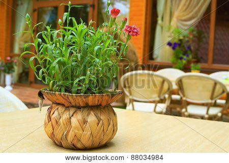 Vase Of Flowers On The Table