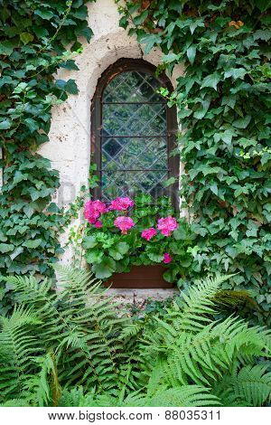 Castle window and vivid pink flowers