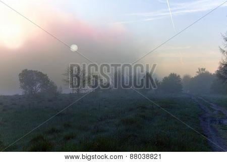 Sunrise Among Valley With Footpath And Trees Silhouettes Covered In Mist