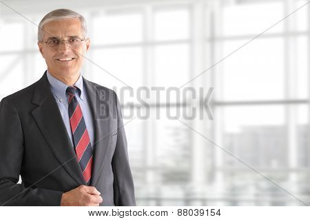 Portrait of a mature businessman standing in front of a large modern office window. The man is smiling and set ot the left side leaving room for copy.