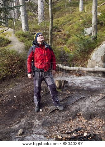 A Man Walks Through The Woods.