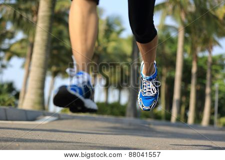 fitness jogger legs running at tropical park. woman fitness jogging workout wellness concept.