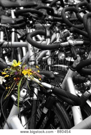 Flowers Tied To Bike