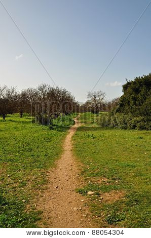 Footpath Through Park
