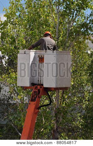 Worker On Crane