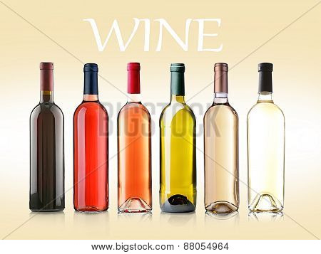 Wine bottles in row on light background