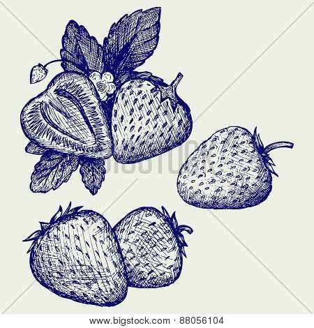 Strawberries with leaves
