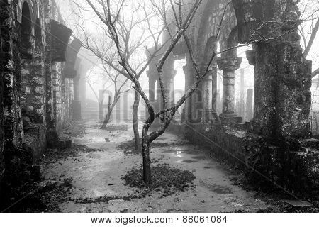 Ruins in the mist