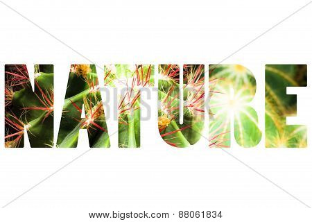 Word Nature Over Cactus Plant.