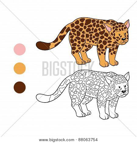 Coloring Book (jaguar)
