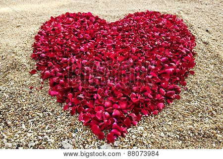 heart shape red roses petal on sands