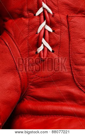 Close up of red boxing glove