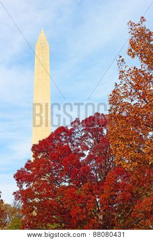 Washington Monument surrounded by trees in autumn foliage.