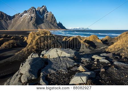 Mountains, rocks and volcanic lava sand dunes by the sea in Stokksness, Iceland. The brown bushes are lavender plants desiccated in the winter but will flourish and bloom when spring comes.