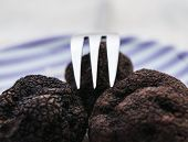 image of truffle  - Three fresh mushrooms black truffle with a fork on a plate close up - JPG