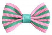 stock photo of bowing  - Striped bow tie pink with emerald green stripes - JPG