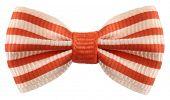 stock photo of bow tie hair  - Striped bow tie white orange stripes - JPG