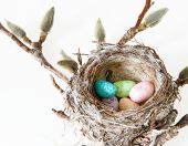 picture of easter candy  - Easter Holiday Celebration - JPG