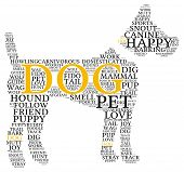 pic of dog tracks  - Dog shaped dog word cloud on a white background - JPG