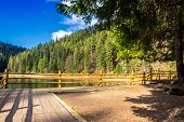 stock photo of pier a lake  - pier on the Lake in mountain near coniferous forest - JPG