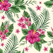 picture of jungle flowers  - Tropical floral seamless pattern with plumeria and hibiscus flowers - JPG