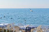 stock photo of flock seagulls  - Exotic scene after dinner on the beach and a flock of flying seagulls - JPG