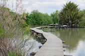 stock photo of ponds  - An elevated wooden footpath over a water pond in En Afek Nature Reserve northern Israel - JPG