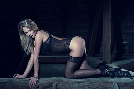 picture of bondage  - Sexy blonde woman in underwear kneeling on timber with whip bdsm - JPG
