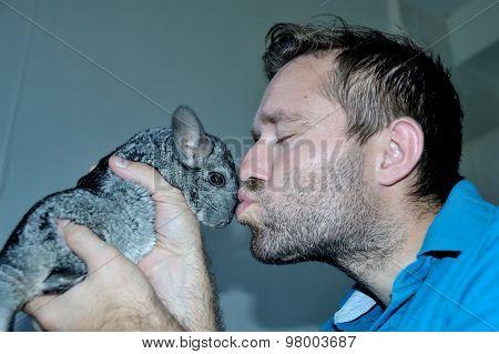 Man holds and kiss cute grey chinchilla
