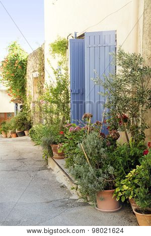 Pot Garden In A Narrow Street, Typical In Southern Europe, Ansouis, Provence, France, Luberon Region