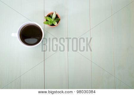 Cup Of Coffee And Small Plant