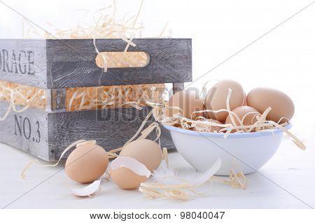 Farm Fresh Eggs On White Background.