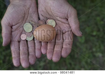 Egg In Hands