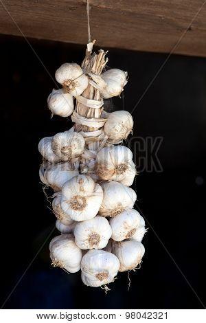 Garlic braid handing from the wall