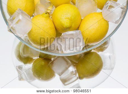 Chilled Lemon,  Dish