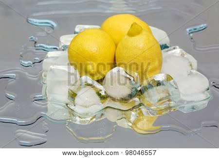 Lemon, Ice
