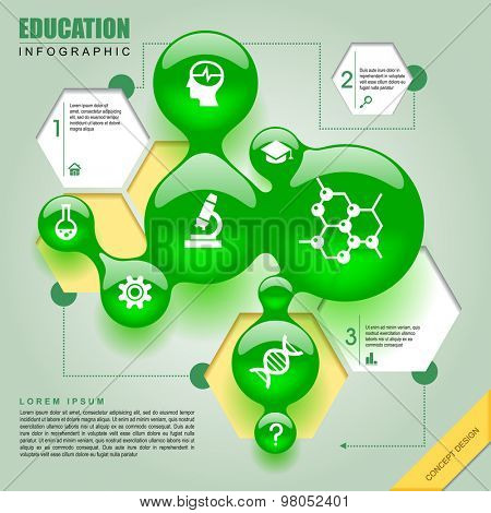 Science template design with green bubbles and hexagons. Education-chemistry infographic concept. Vector illustration