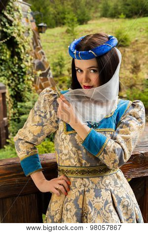 Woman in medieval dress. The girl in a medieval castle. Antique interiors.