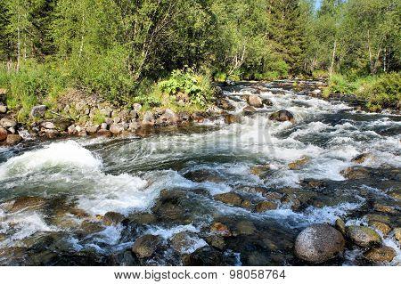 Forest Siberian mountain clean river. Siberia. Khakassia.
