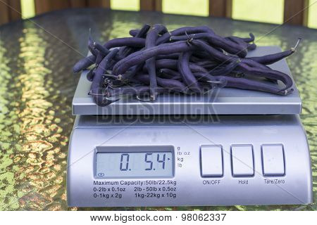 Organic Purple Green Beans On Produce Scale