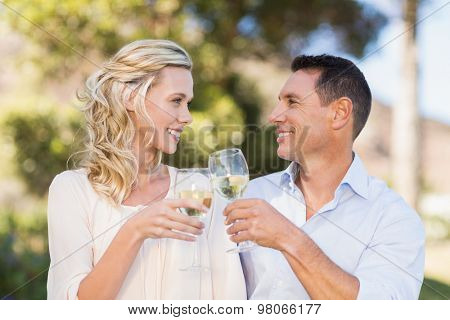 Smiling couple toasting and looking at each other in parkland