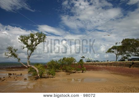 Low-Tide At Beachfront